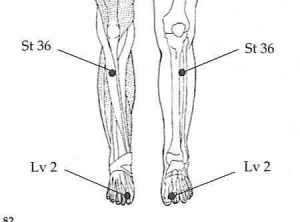 front-of-leg-view-of-pressure-points1