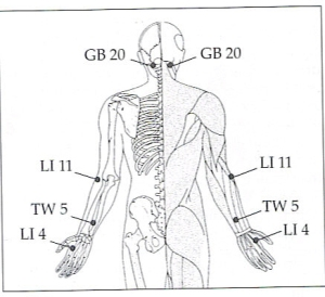 back-of-neck-arms-and-hands-points