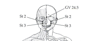 front of the face pressure point
